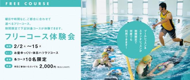02_660_280_seijin_B